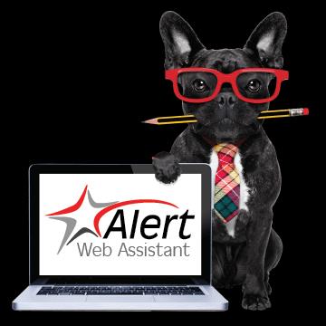 Alert Rental's Web Assistant for website redesign